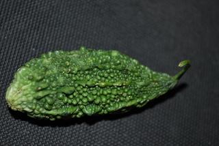 Bitter Gourd or Karela