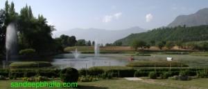 cropped-botanical-garden-srinagar-kashmir-large.jpg