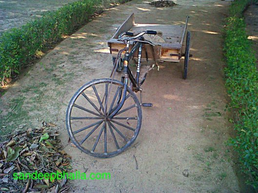 Garbage Collector Tricycle